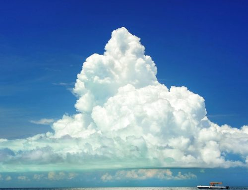Heading into the cloud – contractual freedom through software as a service